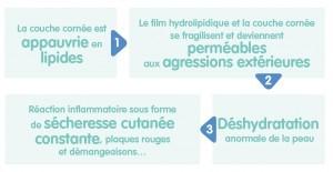 Schema-La-peau-seche-ou-a-tendance-atopique-Biolane-Specialiste-en-hygiene-et-soin-bebe